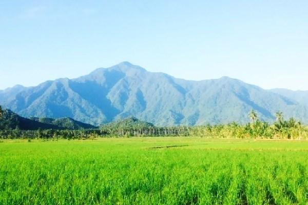 10 Gunung Paling Populer Di Sulawesi Tengah